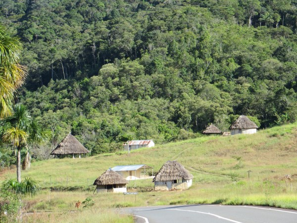 Grand Savanna, Venezuela, local huts, grassland and forest